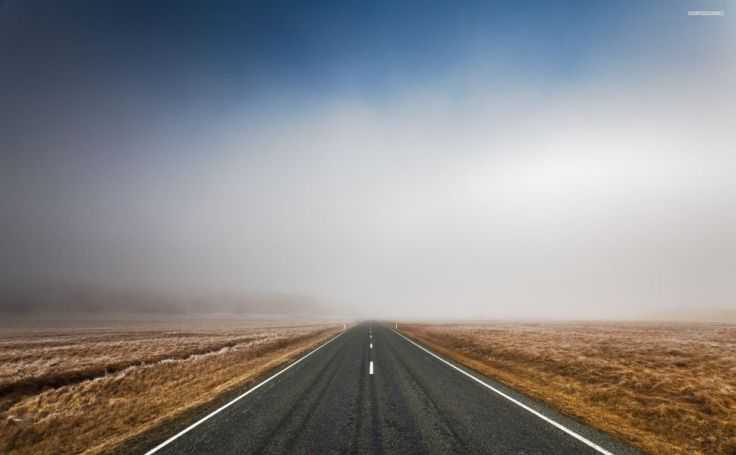 road-in-the-foggy-field-grass-world-2560x1600-wallpaper233133